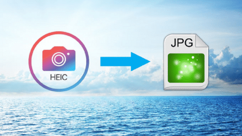 How to Convert HEIC to JPEG And View The Photos on Windows, Mac, and Android