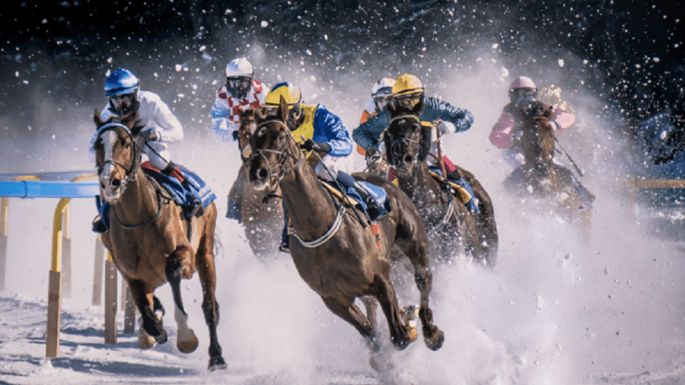 Get These Downloaded! Check Out the Most Powerful Online Sports Betting Apps Today